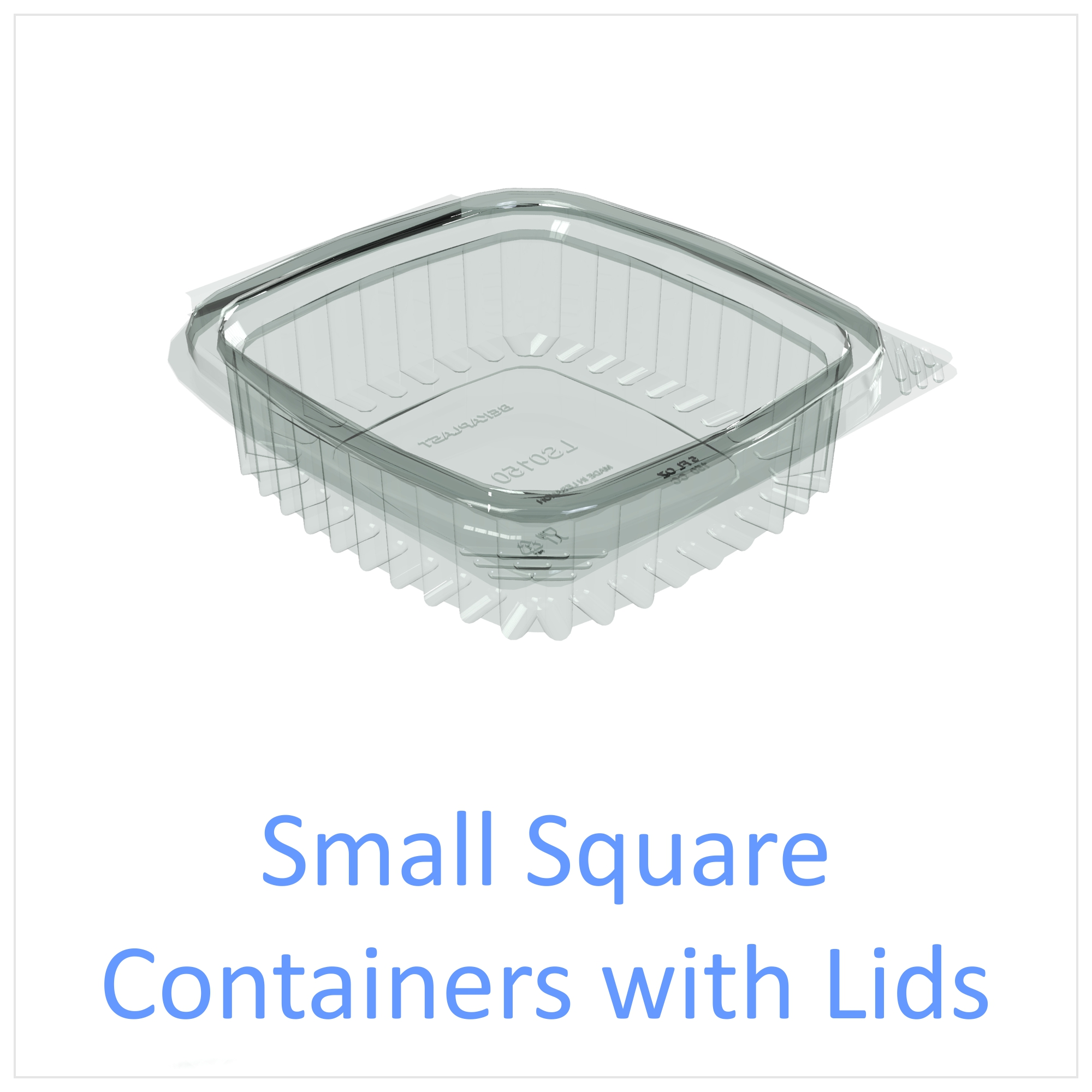 Small Square Containers with Lids
