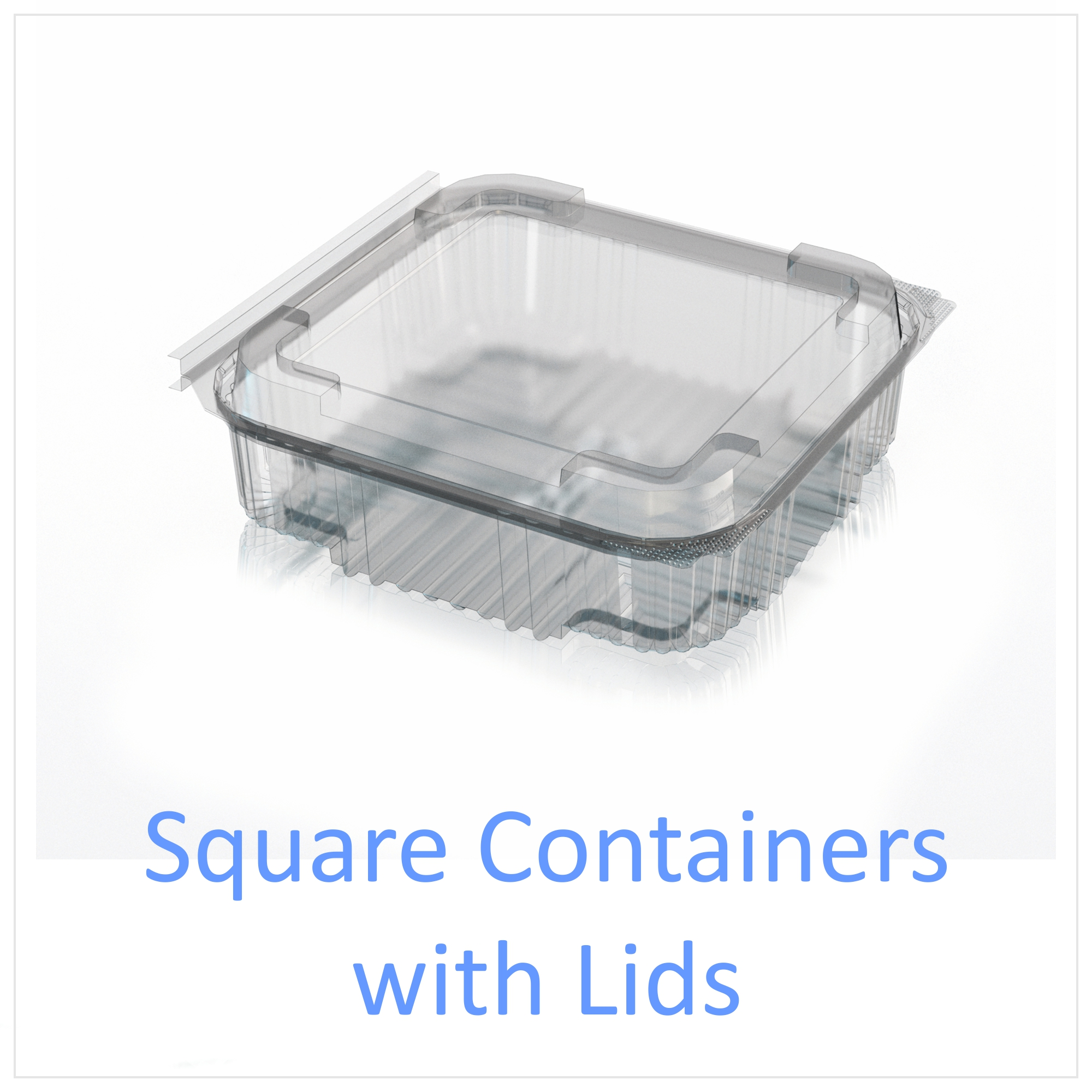 Square Containers with Lids