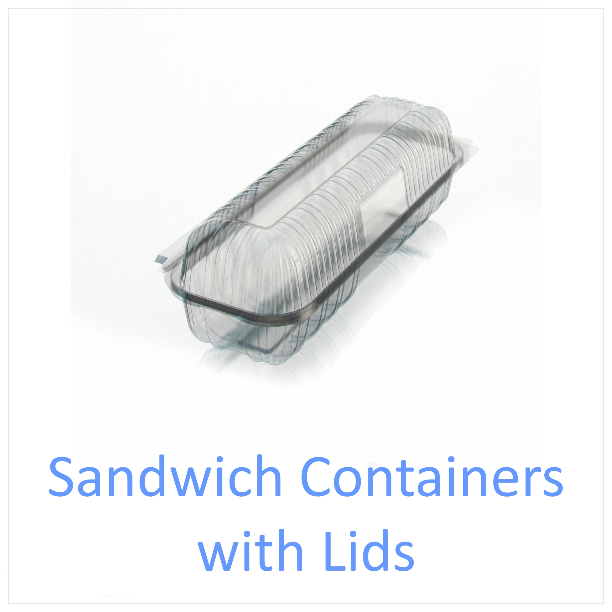 Sandwich Containers with Lids